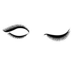 eye lashes icon lashes open and close vector image