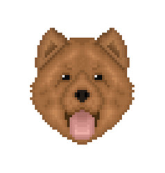 Chow-chow pixel art portrait cartoon dog icon vector