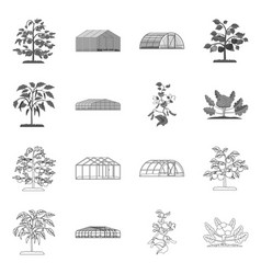 Design of greenhouse and plant symbol vector