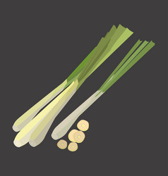 lemon grass with slice flat design vector image