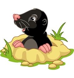 Mole vector