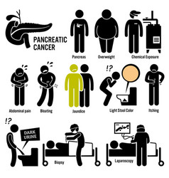 pancreatic pancreas cancer symptoms causes risk vector image