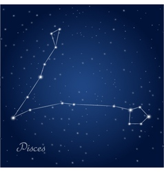Pisces constellation vector image