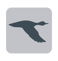 Silhouette flying duck vector