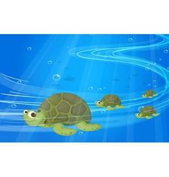 Turtles under sea vector