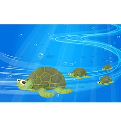Turtles under the sea vector