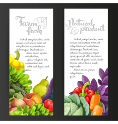 Two vertical banners with fresh fruits and vector