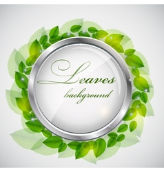 Abstract nature background with leaves vector image