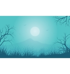 Silhouette of Halloween foggy and moon vector image vector image