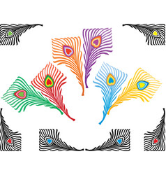 A set decorative feathers peacock vector