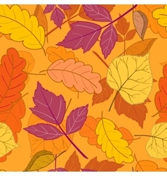 Autumn leaves on orange vector