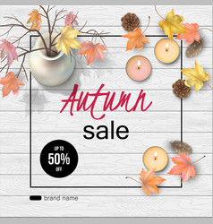 Autumn top view background vector