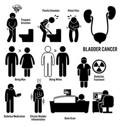 bladder cancer symptoms causes risk factors vector image