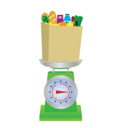 Food on the scales vector image