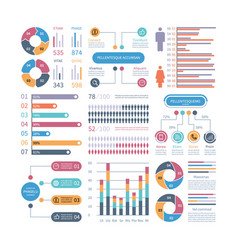 Infographic graphs business chart process vector