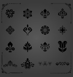 vintage set of floral elements vector image