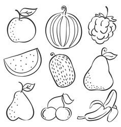 Doodle of fruit fresh set hand draw vector