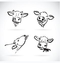 Cow head on white background farm animal vector