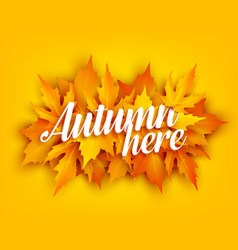 Autumn leaf poster with yellow maple foliage vector