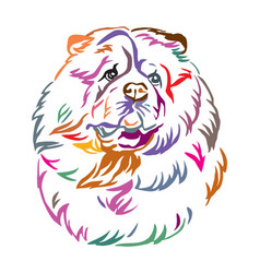 Colorful decorative portrait of chow chow dog vector