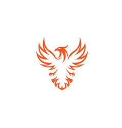 creative phoenix bird logo vector image