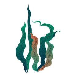 Decorative seaweed and plants for aquarium vector