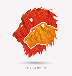 Head lion and lioness vector