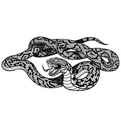 Snake tattoo black and white vector