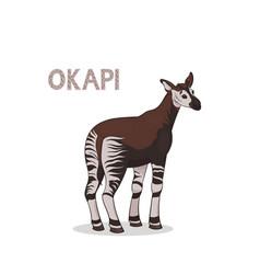 a cartoon okapi isolated on a white background vector image