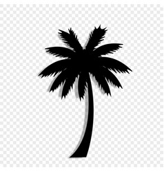 black silhouette of palm tree icon on transparent vector image