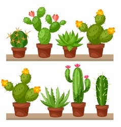 Collection of abstract cactuses in flower pot on vector