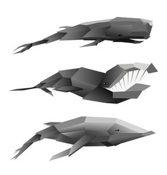 creative set of three polygonal whales on white vector image