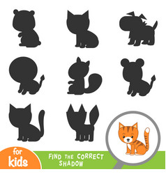 find correct shadow game for children cat vector image
