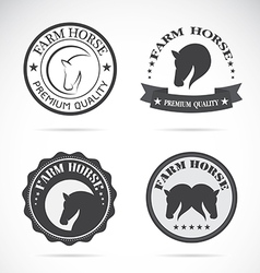 Horses labels vector