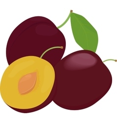 Ripe whole and half plums fruit with leaves vector