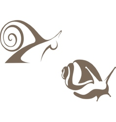 snail sign vector image