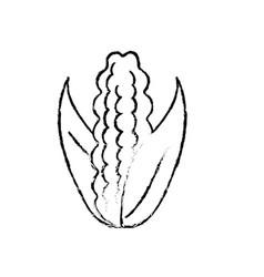 Figure delicious and healthy cob corn food vector