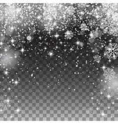 Snow snowflakes on a transparent background vector image vector image