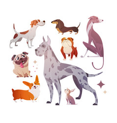 cartoon dogs of different breeds and sizes vector image