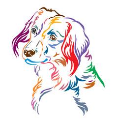 Colorful decorative portrait of nederlandse vector