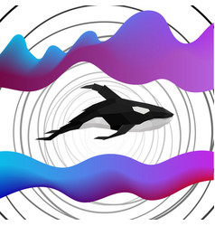 creative orca dolphin design on modern background vector image
