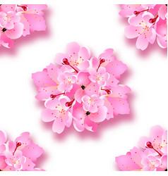 decorative sakura flowers bouquet design vector image