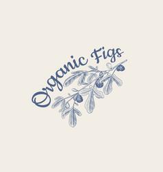 fresh fig badge fruit foliage label or logo vector image