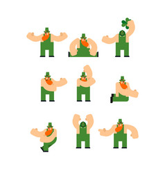 leprechaun set st patricks day character irish vector image
