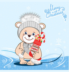 teddy bear in a knitted hat with a bubo vector image