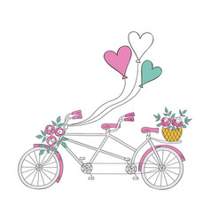 wedding bike vector image vector image