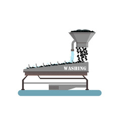 Ripe olives washing on a conveyor line olive oil vector