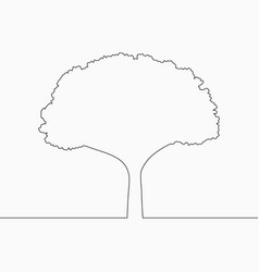 tree one line drawing vector image