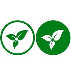 icon with green leaves vector image