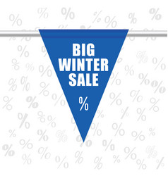 big winter sale icon in blue vector image